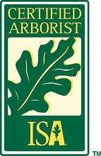 ISA Logo for website.jpg