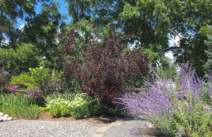 Milford Pollinator Garden