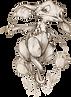 tulipánlakó.png