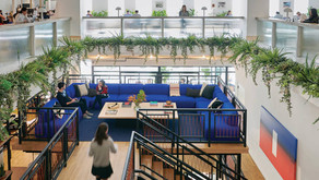 Wellness Co-Working Catches On, We Can Now Die Well, and Grocery Stores Get Fit