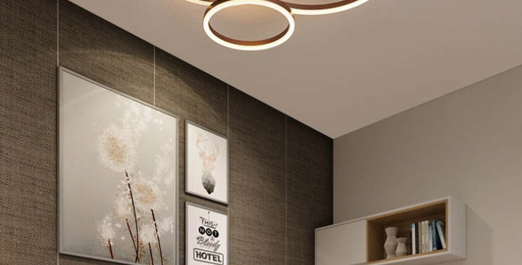 LED Halo & Disc Ceiling Light