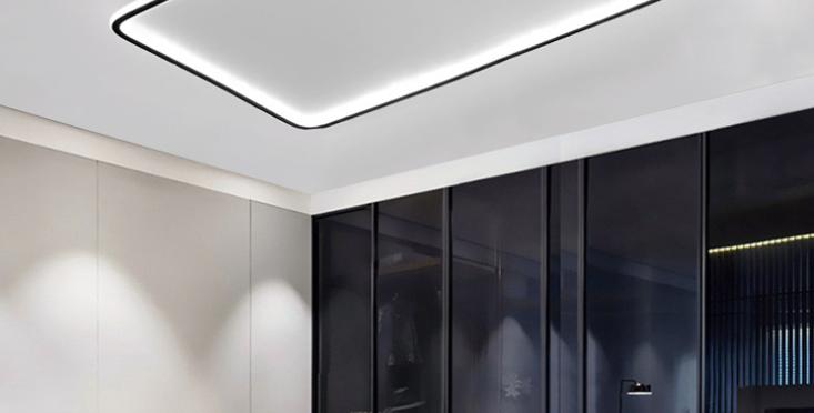 LED Simple Modern Ceiling Light Black+White