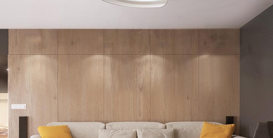 LED Circle & Belt Modern Ceiling Light