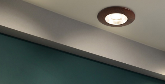 LED Recessed Modern Walnut Wood Downlight/Spotlight