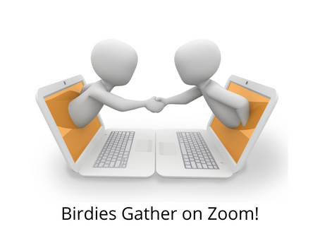 BUSNA hosts Zoom event!