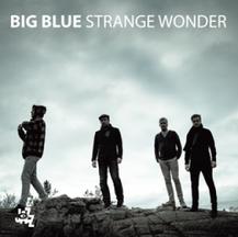 BIG BLUE - STRANGE WONDER