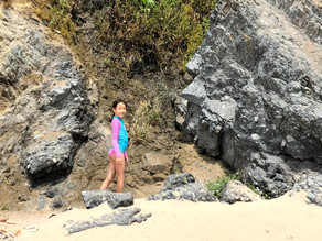 My Favorite Beach - Gazos Creek State Beach