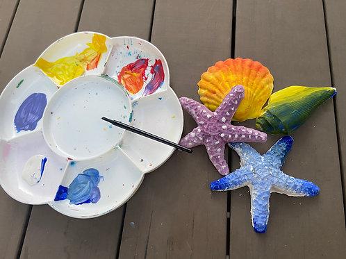 Handmade Seashell Craft Kit
