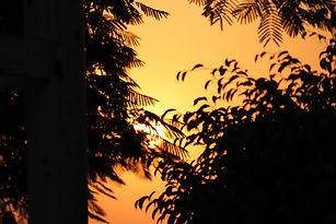 Image by AKSHAT GUPTA
