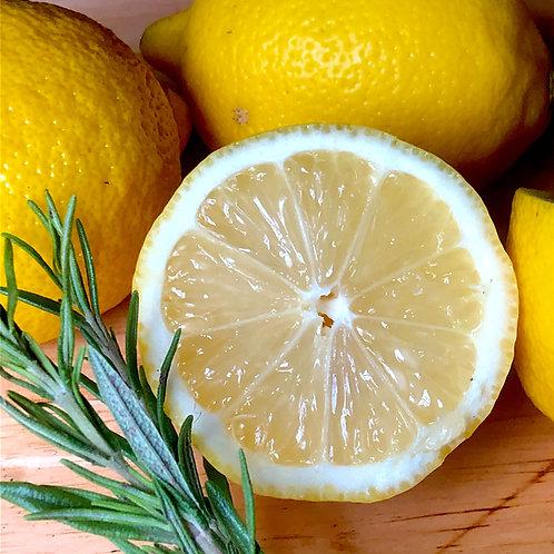 Super Lemon Haze in C Minor