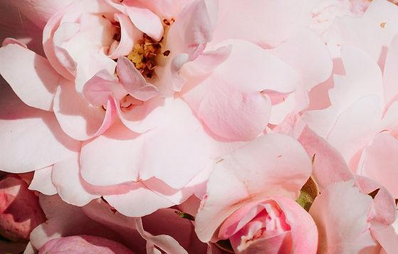 Soins de la peau et des cheveux aux notes florales - Un bouquet sensoriel aux effluves euphorisants