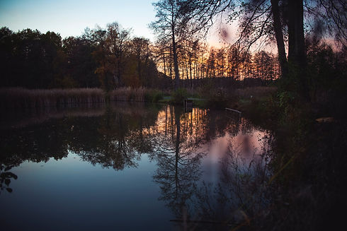 Image by Markus Spiske of a lake at sunset. The image represents how online coaching can help both couples and individuals.