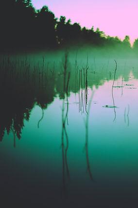 Image by Mari Helin