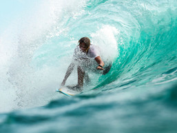 Surfboards from Plant Based Material