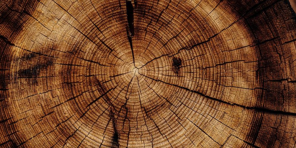 Trä som hållbart fasadmaterial