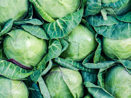 What is Cabbage Good For?
