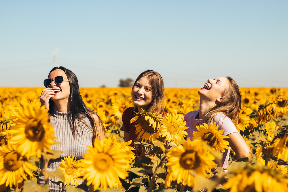Three young women laugh together in a field of sunflowers