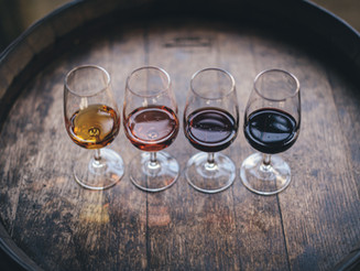 Tishbi Winery Tastings