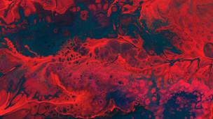 Novos anticoagulantes (DOACs) e varfarina tem riscos semelhantes de sangramento durante endoscopia