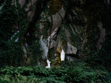 The Message of Lourdes: What the Words of Our Lady Reveal to Us Today, by Christy Wilkens