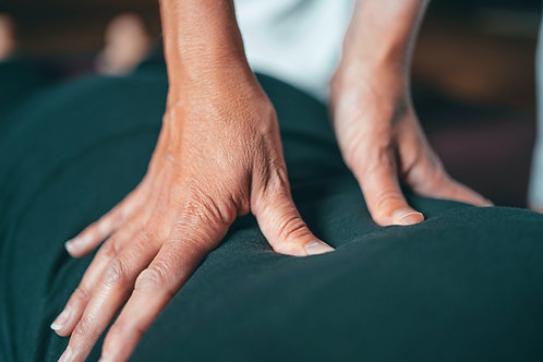 Are you in Pain? Book a Chiropractic Session Now