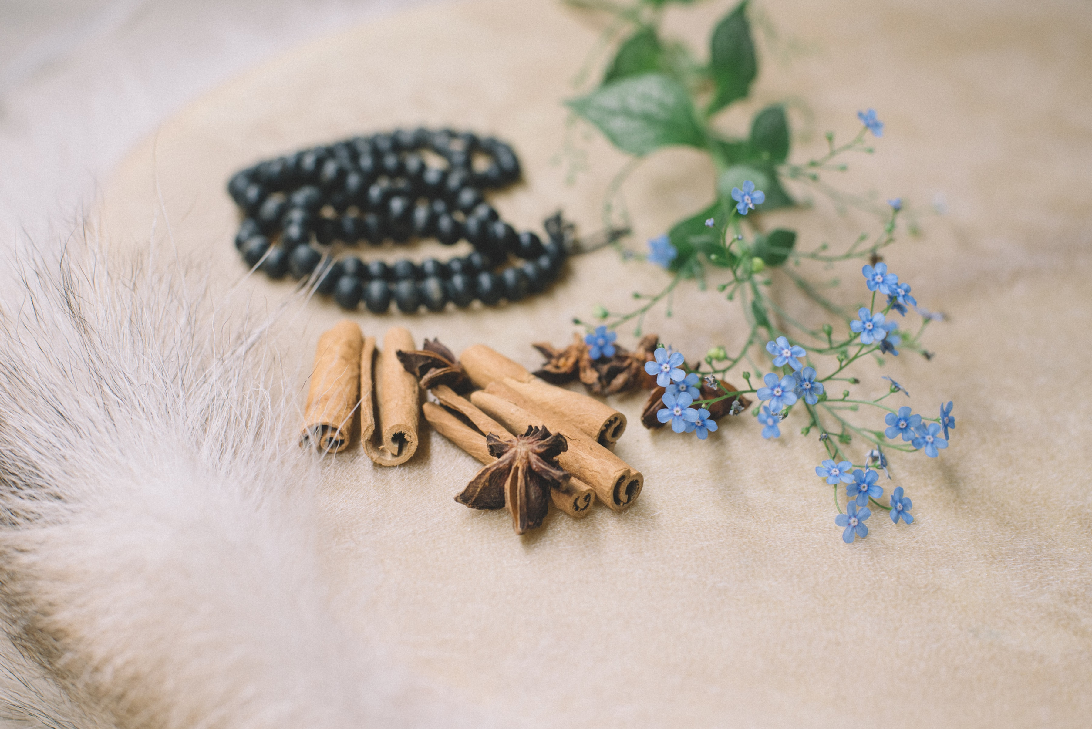 Sacred Healing Journey