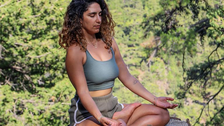 Kraft der Bäume, Ruhe und Entspannung