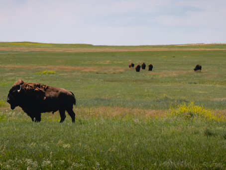 Acquiring a North Dakota Apostille