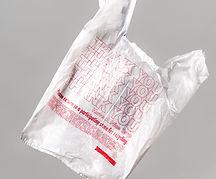 ден без найлонови торбички-lubkailievakk.com