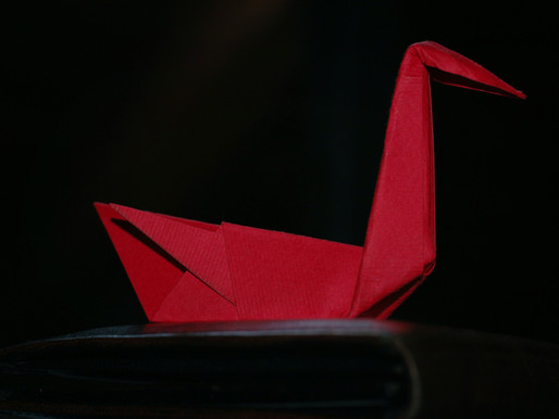 How Origami Inspires Scientific Innovations