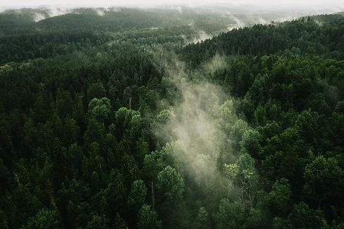 Image by Kristaps Ungurs