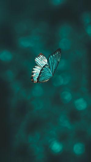 Image by AARN GIRI