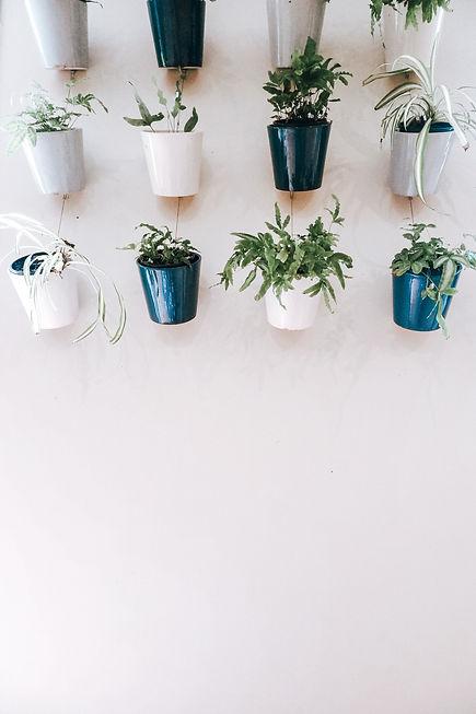 Image by Katerina Jerabkova