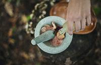 Image by Katherine Hanlon