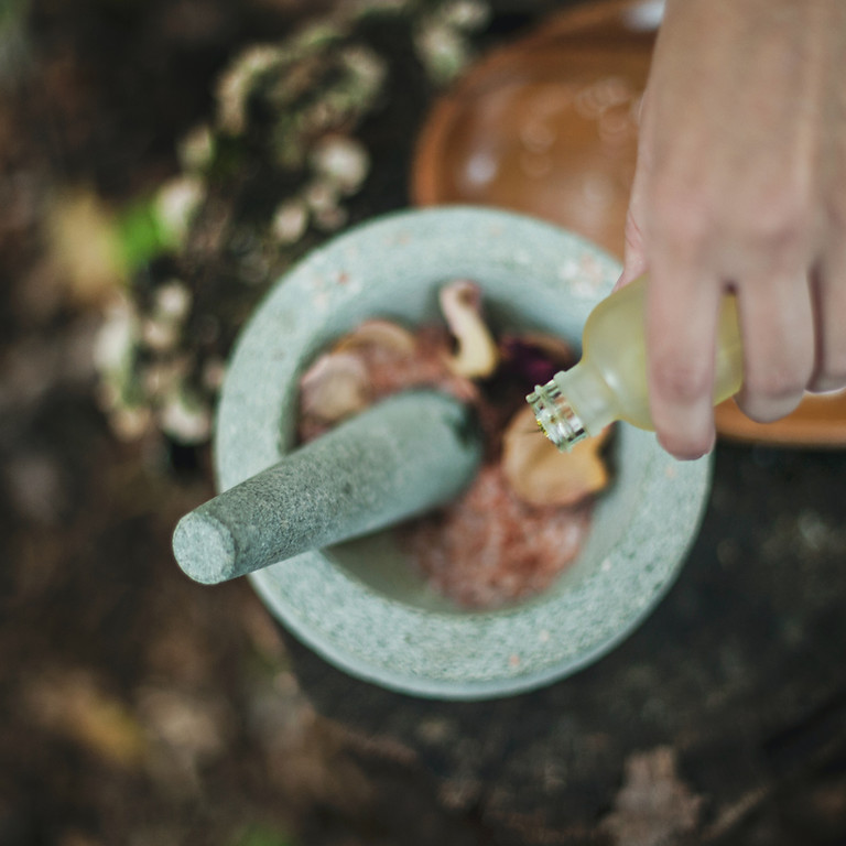 Journey into Herbal Medicine  /  10-12 April 2020