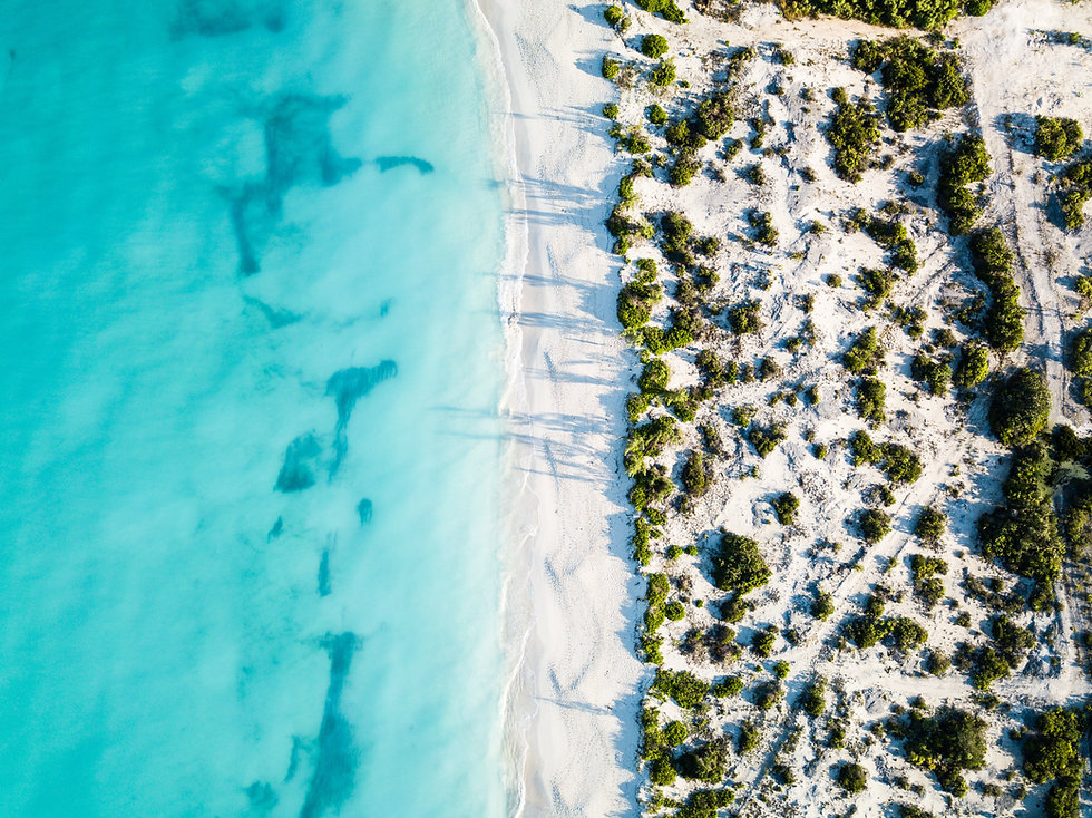 white sand beach turquoise ocean aerial view green bush