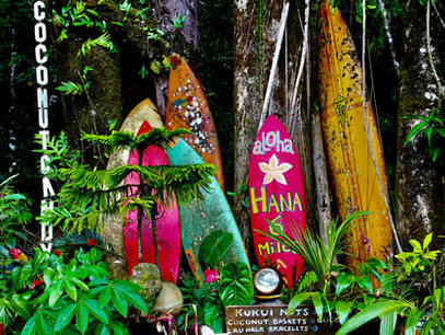 A Professional's Guide for How to Plan a Trip to Maui