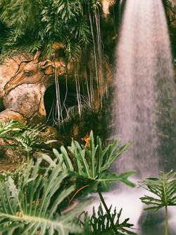 Water Falls - Earthy Naturals