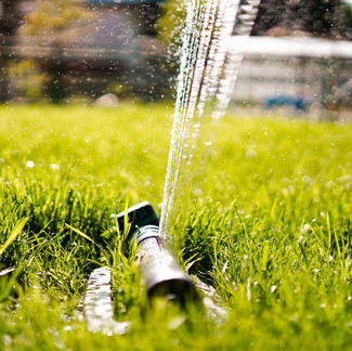 Water Restrictions: What To Do