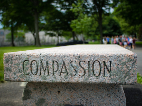 Is it Pity or Compassion | by Pastor Newton Fairweather