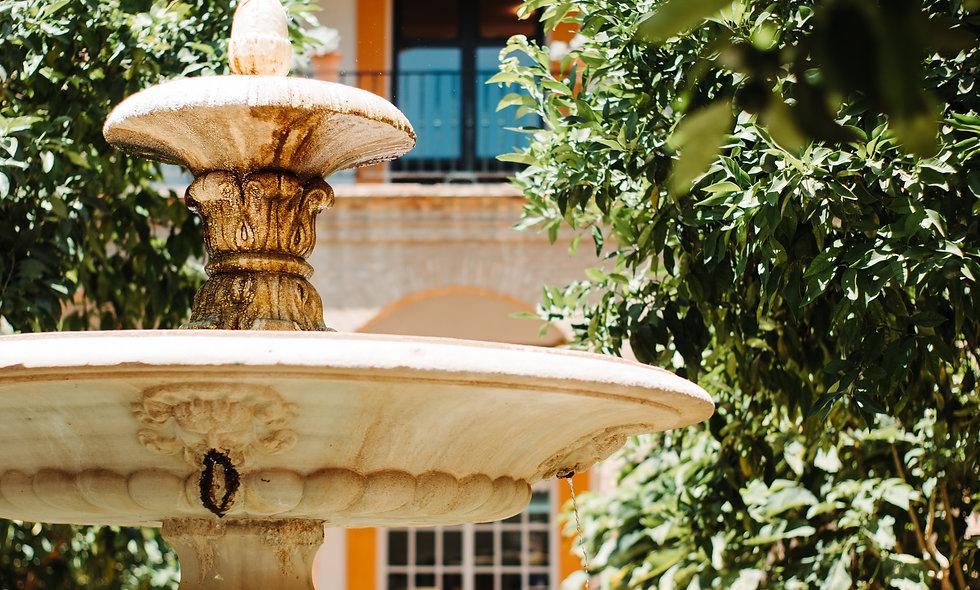 AIP SPAIN | Carmona