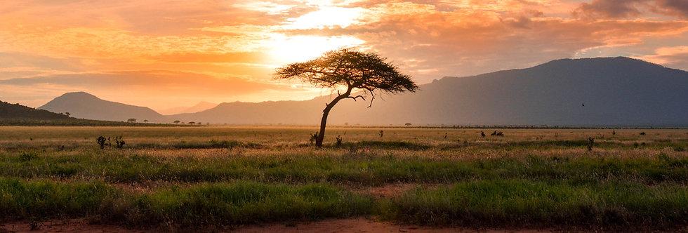 Kenia + Tanzania 15 días: 1 de 3 pagos