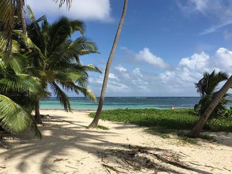 Le Mauritius vogliono rilanciare soggiorni lunghi con un visto premium