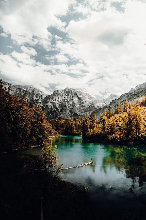 mountains, standing tall, water, trees, unique, home, vision