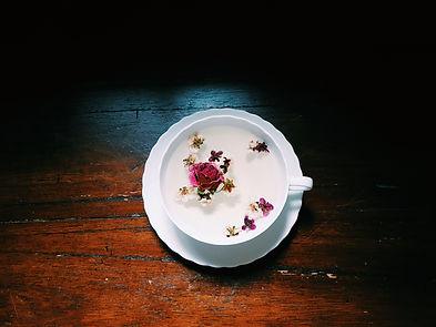 Image by Tea Creative │ Soo Chung