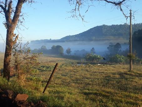 Prazo para o Cadastro Ambiental Rural vai até dia 31