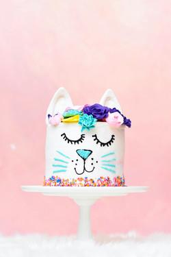 PIP - Cat Cake