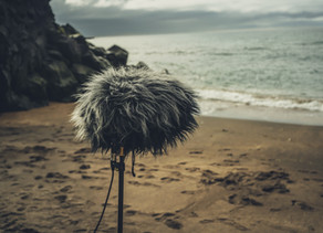 Field Recording mit App-Unterstützung