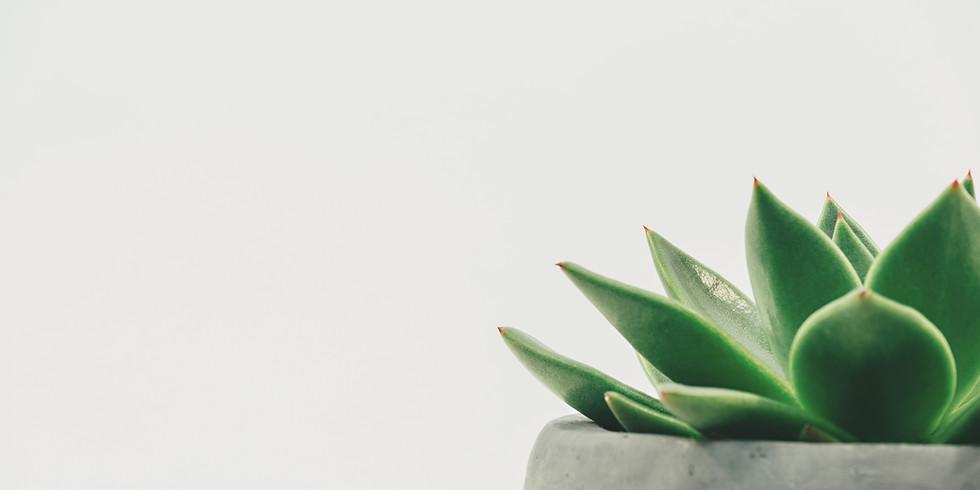 Essentials PreNatal Massage  8CEs 