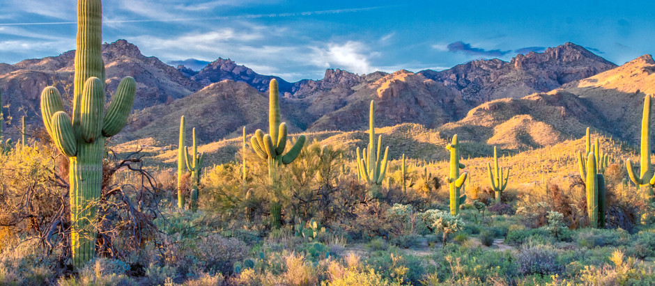 Best Desert Trips & U.S. National Parks of the American Southwest